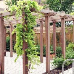 Pergola, PAgoda, Hardwood, Timber, Woodscape, Garden Structures, Landscaping, Hardscaping, Planters